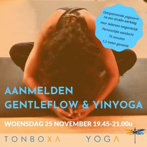 Gentleflow en Yinyoga 25 November